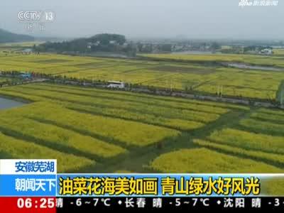 安徽芜湖:油菜花海美如画  青山绿水好风光