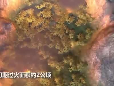 四川凉山森林火灾30名失联扑火队员遇难,3D还原灾情瞬间