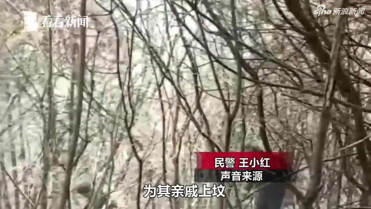视频:女子烧纸引发森林火灾被刑拘 山坡对面就是加