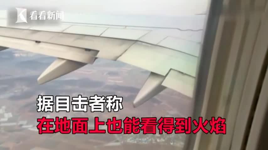 视频-大韩航空一架波音737客机起飞后遭鸟击 致