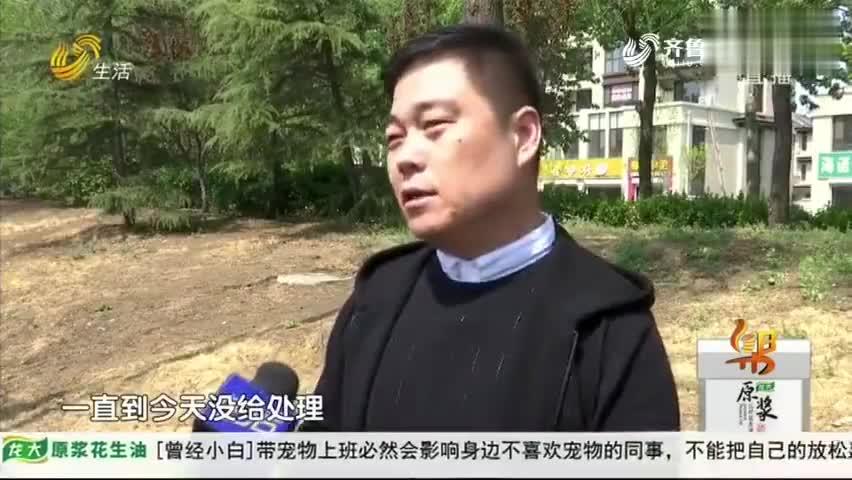 视频:男子新买奥迪发现去年已在外地上路 无法上牌