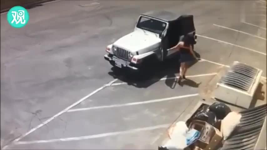 视频:将7只奶狗丢弃垃圾桶 美国女子被捕