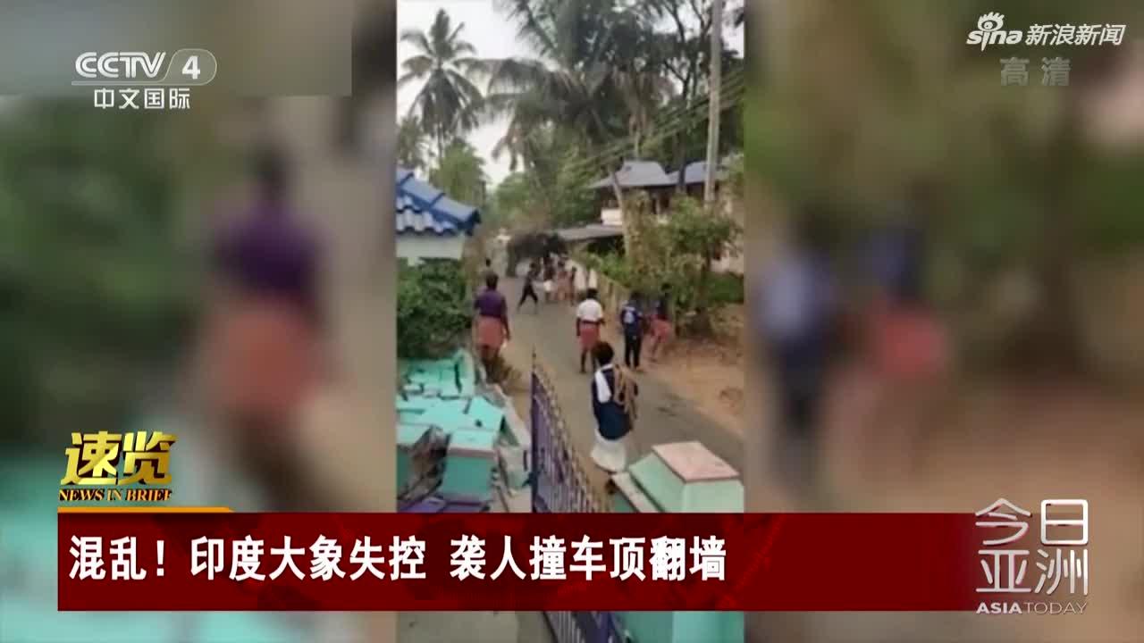 视频-印度大象失控 袭人撞车顶翻墙