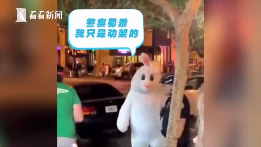 视频-路人扮可爱兔子劝架成网红 然而头套下的他竟
