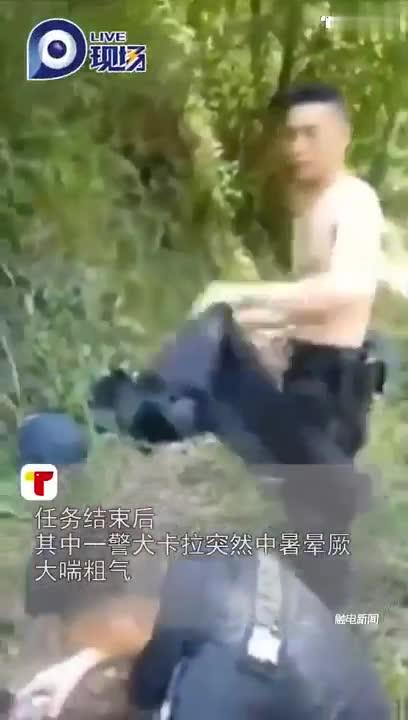 视频:警犬山地执行任务后中暑倒地 民警紧急施救