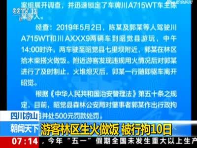 《朝闻天下》四川凉山:游客林区生火做饭  被行拘10日