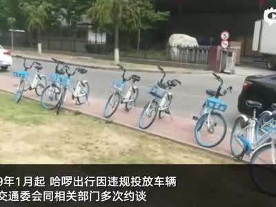 共享单车首罚!哈��出行因违规投放拒不整改 被罚5万元 - 我们视频 - 新京报网