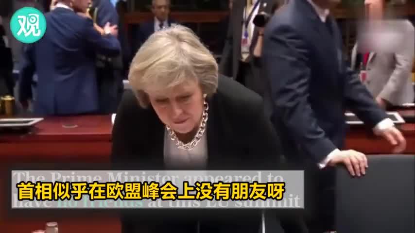 视频-特蕾莎梅与欧盟领导人的故事