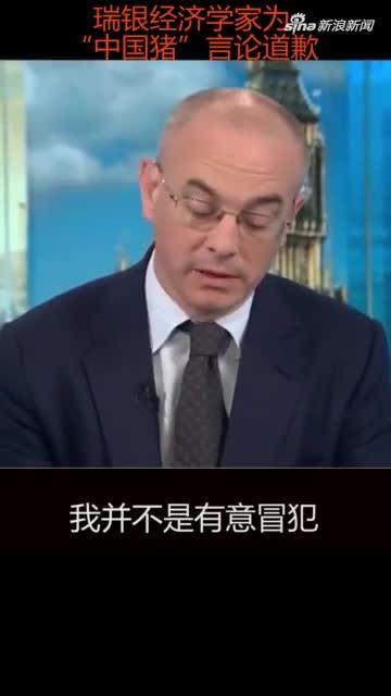 视频-瑞银经济学家报告中写