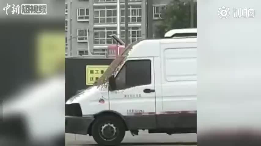视频:密集恐惧症慎入!汽车遭上万只蜜蜂围攻 消防
