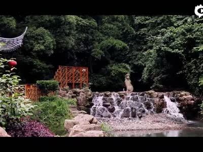 彭泽龙宫洞——夏季出游好去处