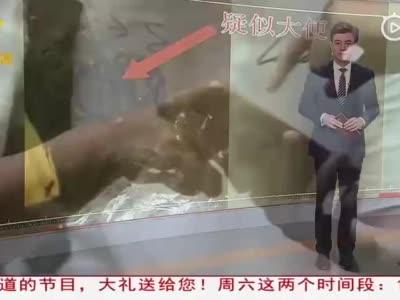 南宁:网购童装收到疑似大便 如此商家太不走心