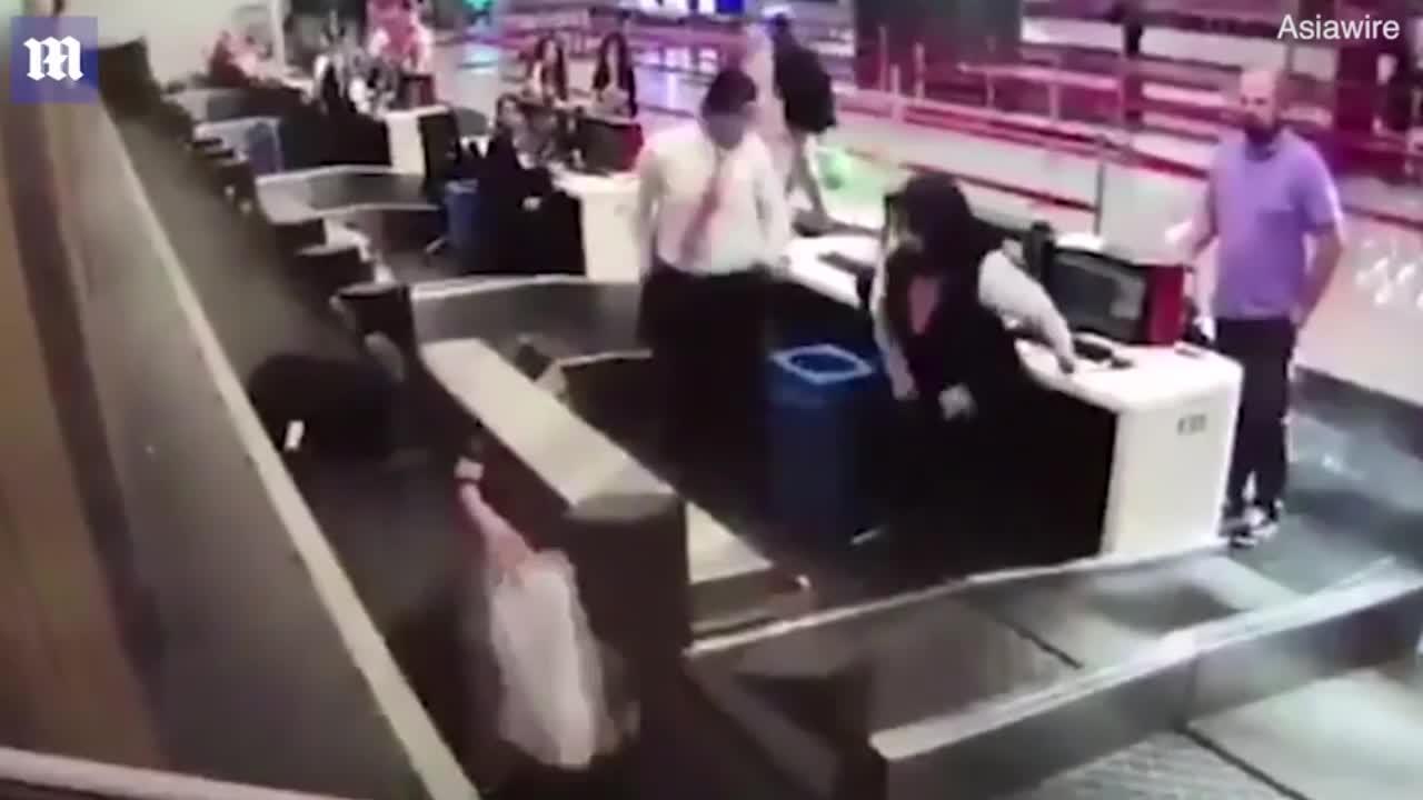 视频-哭笑不得!女子误把行李输送带当成登机口