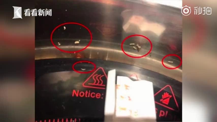 视频:火锅店吃出活蛆 电磁炉上都爬满了