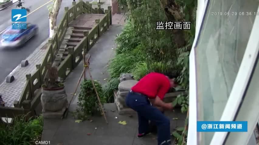 视频:病急乱投医?六旬老人偷灵芝救90岁老母亲
