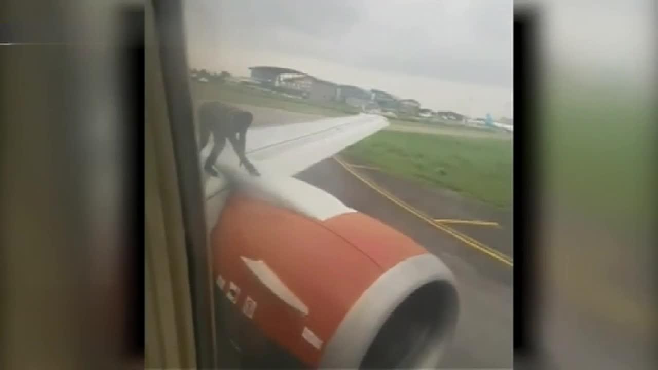 视频-尼日利亚客机正起飞 一男子突然爬上机翼吓坏