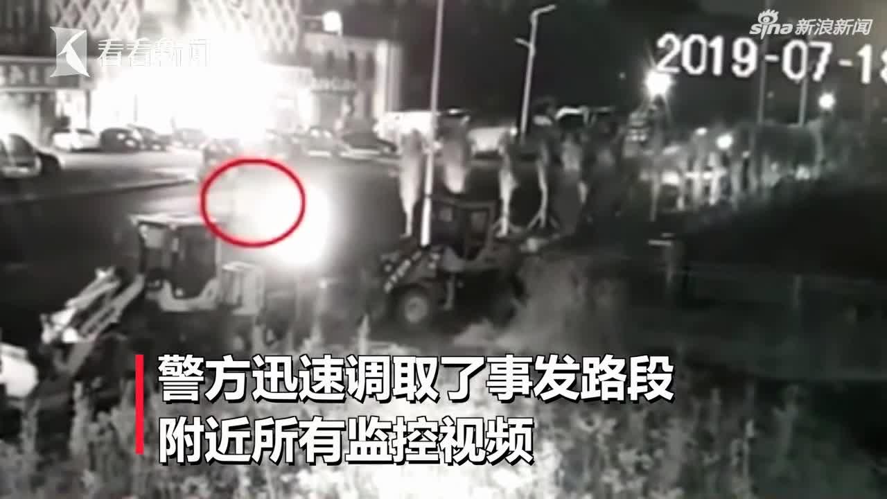 视频:阴阳两隔!父子俩过马路被撞飞 车主却非