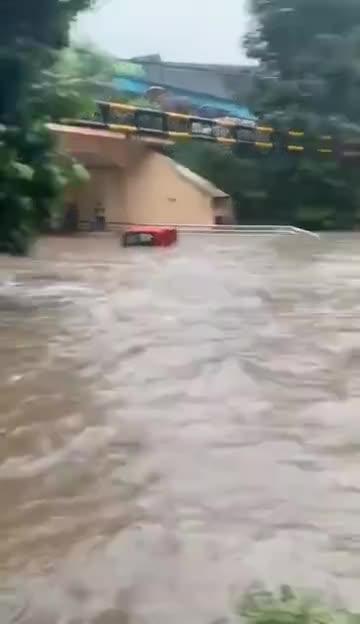 视频-车辆被淹有人坐车顶求助 消防员游泳救人