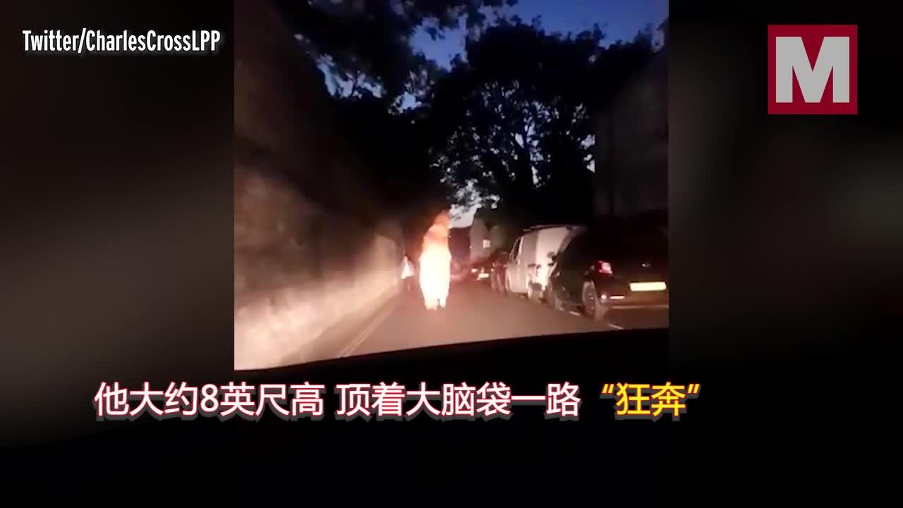 """视频-英警察半夜开车追逐""""霸王龙"""" 狂笑不止称"""""""