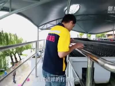 滇池捞藻人