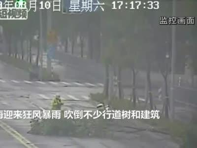 """视频:台风""""利奇马""""登陆 6省651万人受灾"""