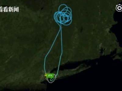 东航客机纽约起飞后返航#东航一纽约飞上...