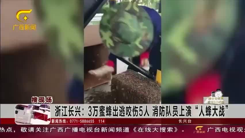 """视频:3万蜜蜂出逃咬伤5人 消防队员上演""""人蜂大"""