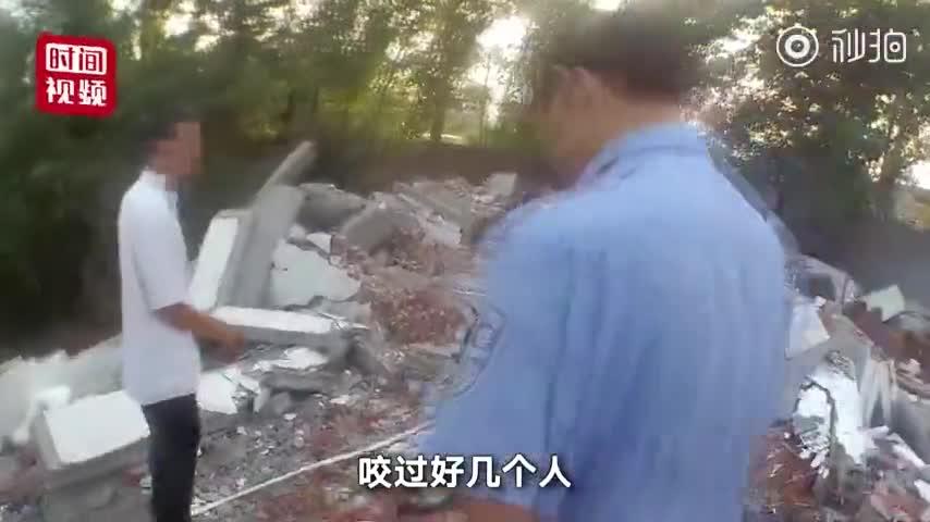 视频-厂房拆迁藏獒恋家不愿离开场面失控 主人报警