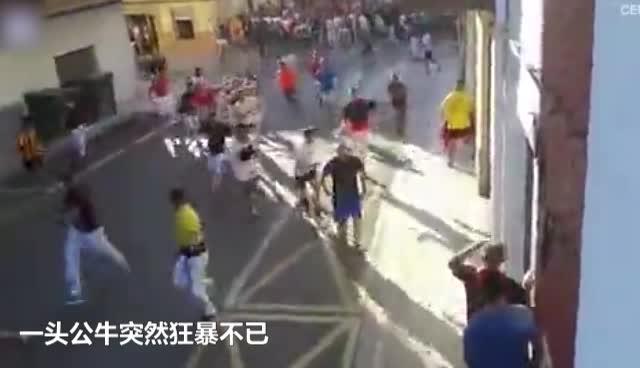 视频:西班牙公牛失控袭击人群 一名红衣男子遇害死