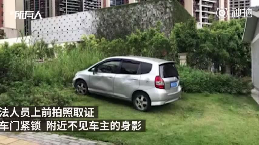 视频-绿化带停车3小时被罚三千多元:按面积算