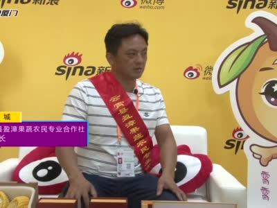 【新浪专访】云霄县盈漳果蔬农民专业合作社理事长 蔡恩城