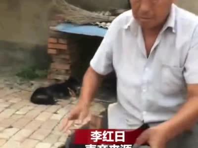 教师节祖孙三代自制35支木制钢笔谢师恩 网友:硬核又走心