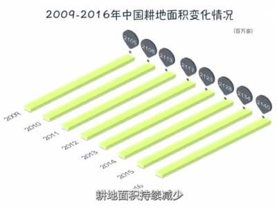 养活14亿人,中国为什么能?-新华网