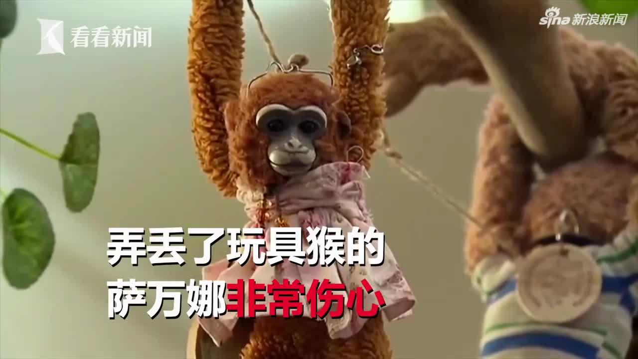 视频-澳女童白金汉宫弄丢玩具猴 写信给女王失而复