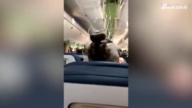 视频-美一航班经历惊魂7分钟 骤降8800米吓坏