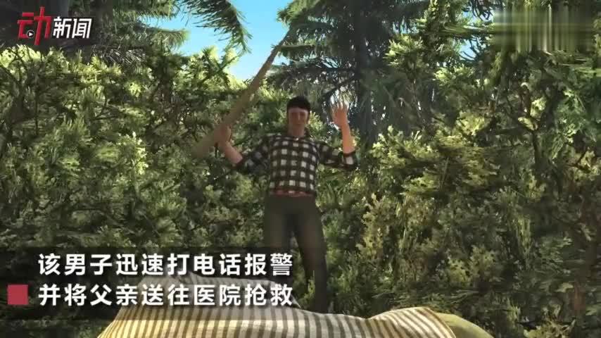 视频-意大利父子禁猎区打猎儿子误杀父亲被捕:涉嫌