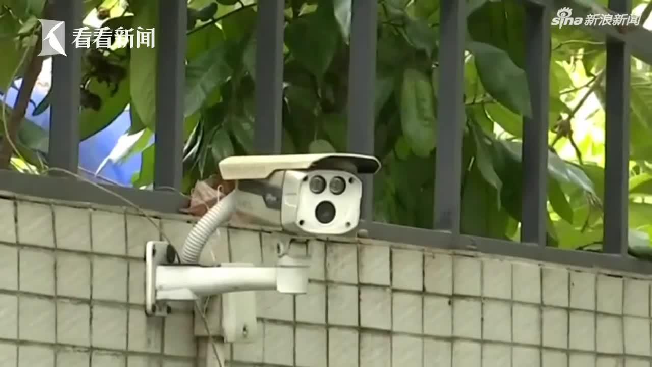 视频-男子偷手机还报假警 被抓后称:我就是逗民警