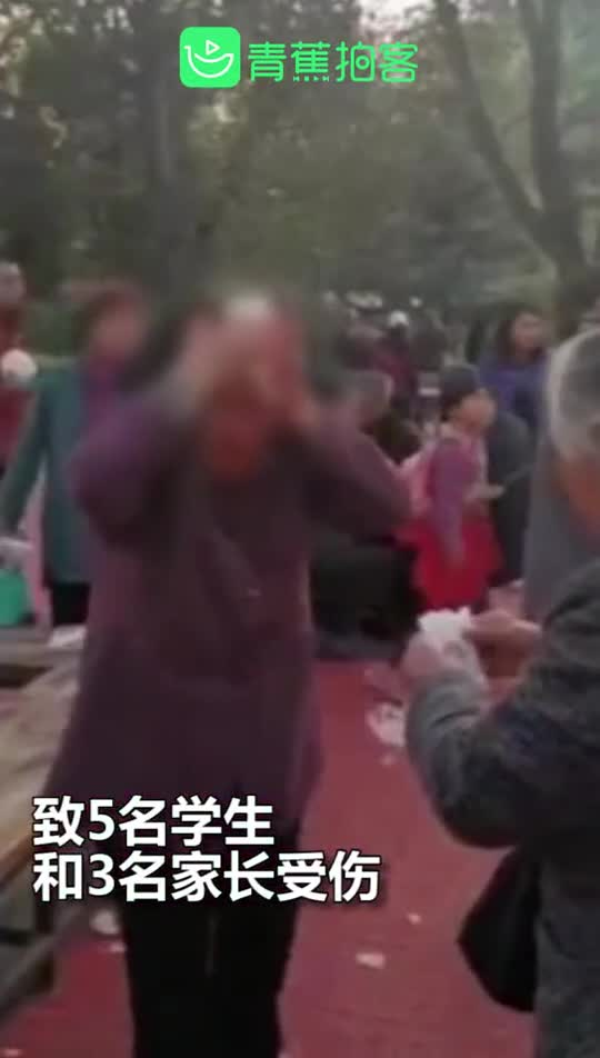 视频:河北一大爷公园里持钳子打伤8人 多名学生和