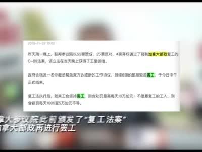四川一网络科技公司22人被逮捕涉组织领导传销活动
