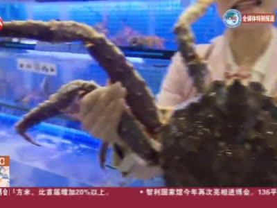 视频 探营进博会:来自深海的俄罗斯帝王蟹 一元起拍