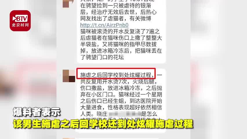 视频|南京一名大学生被指虐猫致死到处炫耀 本人否