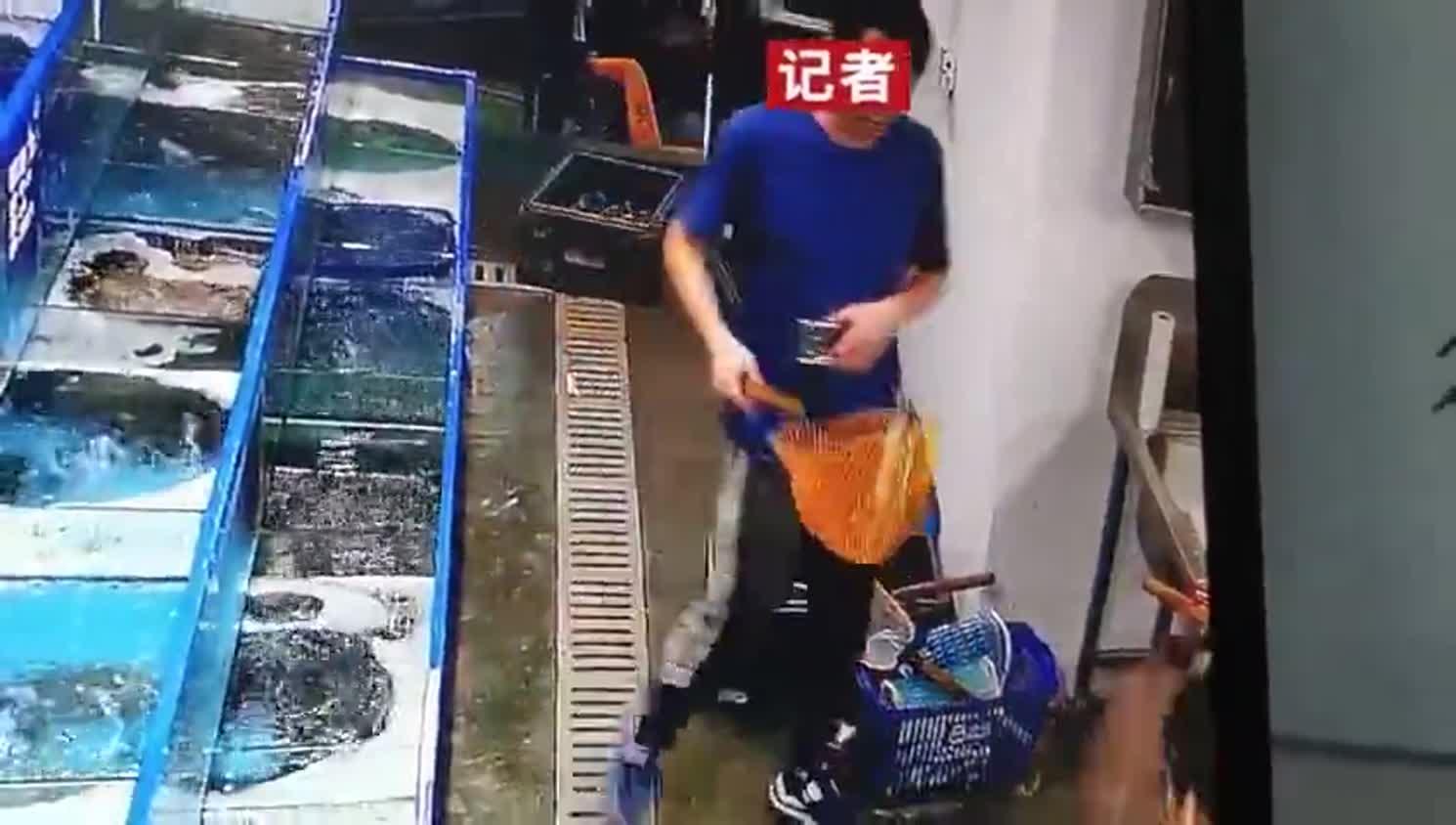 监控视频:记者捞完鱼后在地上摔了三下 掏出手机记