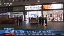 荷兰警方:海牙购物节持刀伤人案嫌犯已被捕