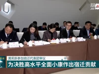 黄莉新参加宿迁代表团审议 为决胜高水平全面小康作出宿迁贡献