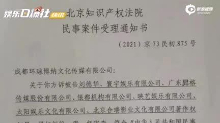 视频:刘德华《扫毒2》被诉抄袭遭赔1亿 北京知识产权法院已立案