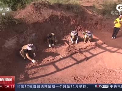 视频五 [新闻直播间]重返侏罗纪(完整版)